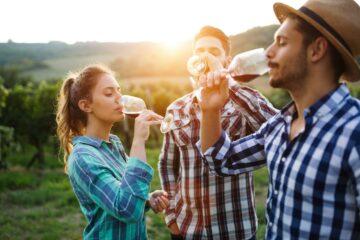 Quels vignobles et domaines viticoles visiter dans le Bordelais ?